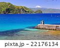 川奈の夷子神社付近より富士山方向を望む 22176134