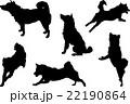 柴犬シルエット 22190864