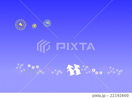 花火を見つめる白兎 22192600