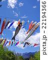 青空を泳ぐ鯉のぼり 22194366