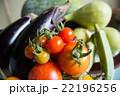 夏野菜 野菜 茄子の写真 22196256