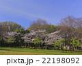 桜と新緑、青空の風景 22198092