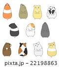 動物 ハムスター 種類のイラスト 22198863