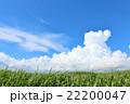 青空 雲 夏の写真 22200047