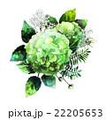 Green watercolor  hydrangea vignette  22205653