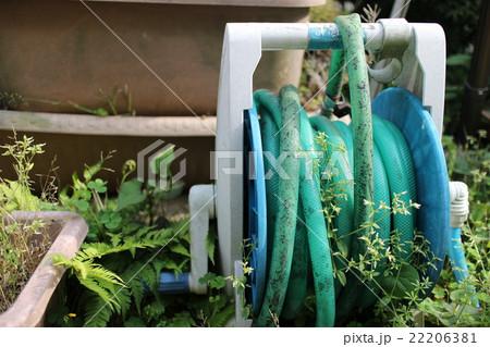 水撒き用の庭に置きっぱなしのホース 22206381