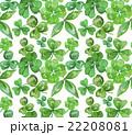 木の葉 葉 柄のイラスト 22208081