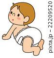 赤ちゃん 22209520