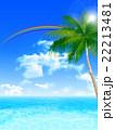 海 夏 ヤシの木のイラスト 22213481