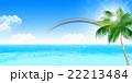 海 夏 ヤシの木のイラスト 22213484