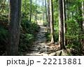 熊野古道 石畳 風景の写真 22213881
