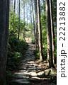 熊野古道 石畳 森の写真 22213882