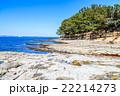 佐久島 大島の磯 22214273