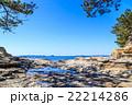 佐久島 大島の磯 22214286