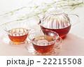 ティータイム(紅茶) 22215508