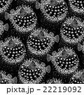 Graphic puffer fish pattern 22219092