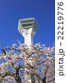五稜郭タワーと満開の桜の花 22219776