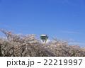 五稜郭タワーと満開の桜の花 22219997