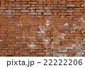 レンガ 煉瓦 壁の写真 22222206