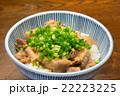 ぼっかけ丼 22223225