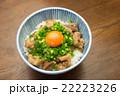 ぼっかけ丼 22223226
