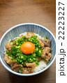 ぼっかけ丼 22223227