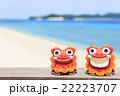 沖縄 阿嘉島 キタ浜ビーチ シーサー 22223707