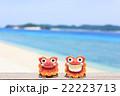 沖縄 阿嘉島 キタ浜ビーチ シーサー 22223713