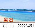 沖縄 阿嘉島 キタ浜ビーチ シーサー 22223851