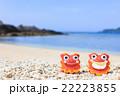 沖縄 阿嘉島 ヒズシビーチ シーサー 22223855