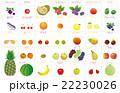 果物いろいろ 22230026