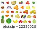 果物いろいろ 22230028