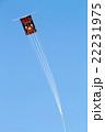 凧揚げ 22231975