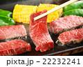 焼き肉 22232241