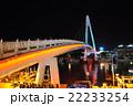 淡水 情人橋  22233254
