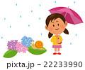 梅雨 雨 ベクターのイラスト 22233990