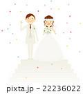 結婚式 新郎新婦 全身 階段 イラスト 22236022
