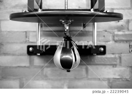 Speed punching bag in gymの写真素材 [22239045] - PIXTA
