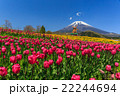 富士山 ぐりんぱ 22244694