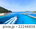 阿嘉島 海 夏の写真 22246838
