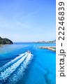 阿嘉島 海 夏の写真 22246839