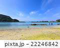 阿嘉島 海 夏の写真 22246842