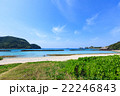 阿嘉島 海 夏の写真 22246843