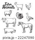 動物 ウシ 牛のイラスト 22247090