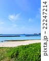 阿嘉島 海 夏の写真 22247214