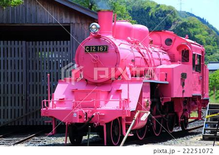 ピンクのSL 22251072
