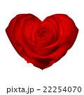 ハート ハートマーク 心臓のイラスト 22254070