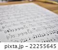 手書きの楽譜 22255645