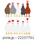 動物 鳥 ニワトリのイラスト 22257701