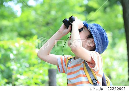 双眼鏡を覗く男の子 22260005